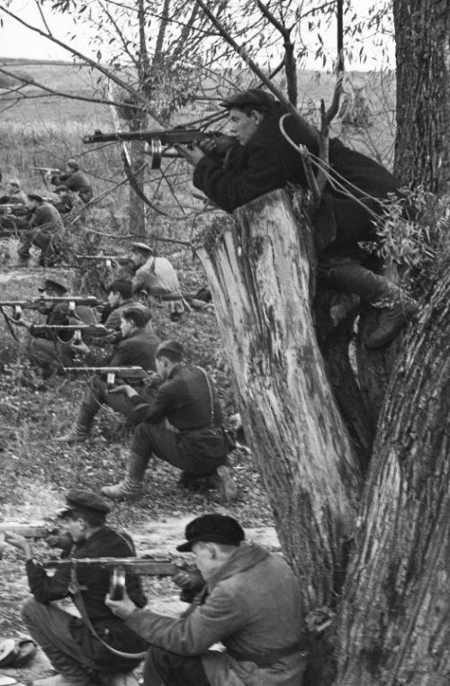 Партизаны Брянской области в бою. 1943 г.