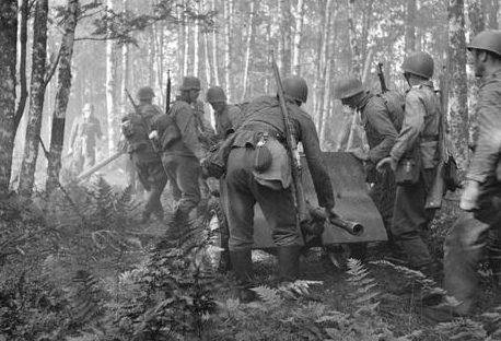 Финские артиллеристы в лесу у Симола. 13 августа 1941 г.