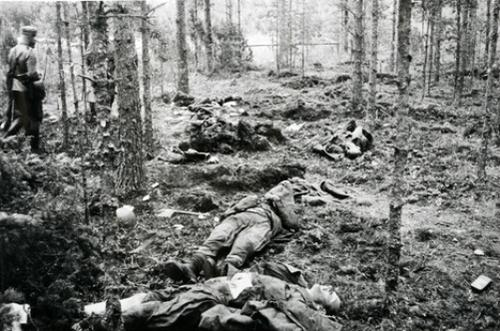 Финский офицер осматривает советские жертвы в лесах Суденожи. 26 августа 1941 г.