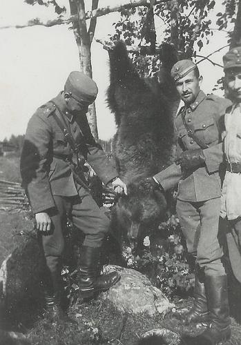 Добыча финских офицеров.18 сентября 1941 г.