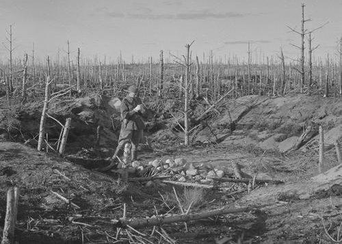 Поле боя в Тайпале. 23 сентября 1941 г.