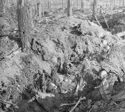 Финская траншея у Сумма. Карельский перешеек, 9 октября 1941 г.