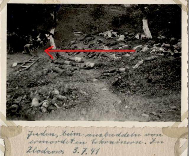 Немецкое фото раскопанных тел у Золочевского замка и евреев, раскапывающих захоронение руками.