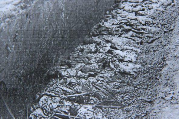 Захоронение останков 30 июня 1941 г. (немецкая фотография).