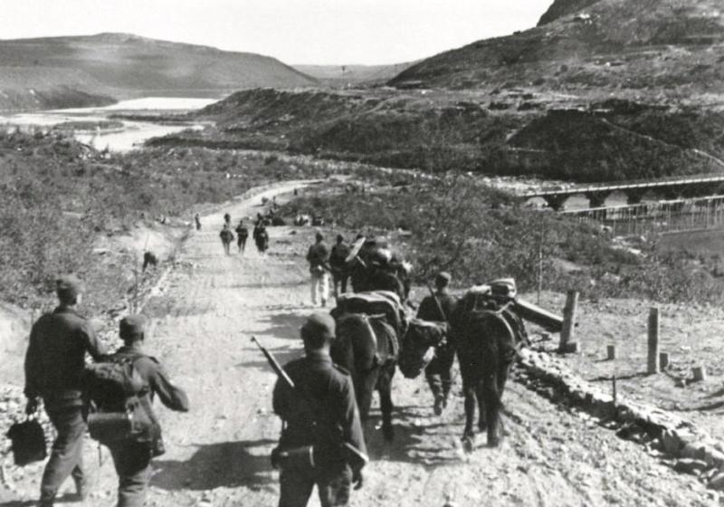Высадка десанта в Западной Лице.