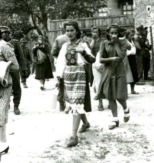 Львовяне ищут среди расстрелянных своих родных во дворе тюрьмы № 1. 3 июля 1941 г.