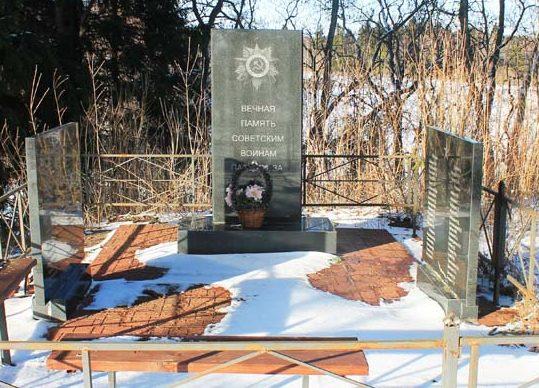д. Заселица Андреапольского городского округа. Братская могила, в которой похоронено 65 советских воинов.