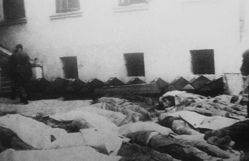 Тела заключенных тюрьмы в Тарнополе, убитых НКВД перед отступлением частей Красной Армии. Июль 1941 г.
