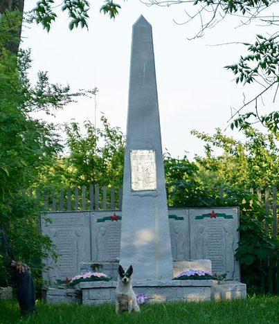 с. Мотрино Кобелякского р-на. Памятник, установленный в 1965 году на братской могиле советских воинов, погибших в годы войны.
