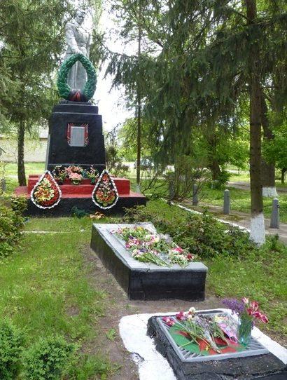 с. Озера Кобелякского р-на. Памятник, установленный на братской могиле советских воинов, погибших в боях за село.