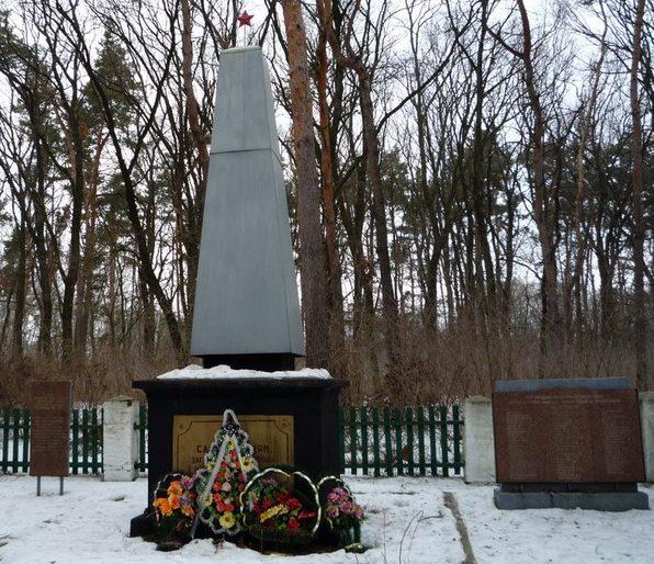 г. Лохвица. Памятник советским воинам, установленный в 2009 году. Скульптор - Шапран и архитектор П. Говдя.