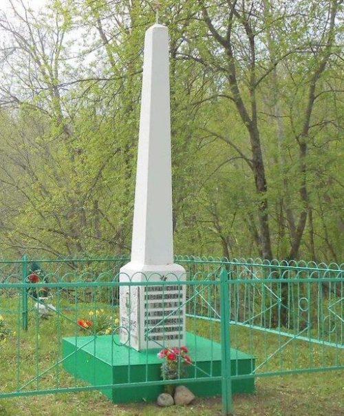 д. Петрушино Бельского р-на. Воинское захоронение, где покоится прах 1246 советских воинов.