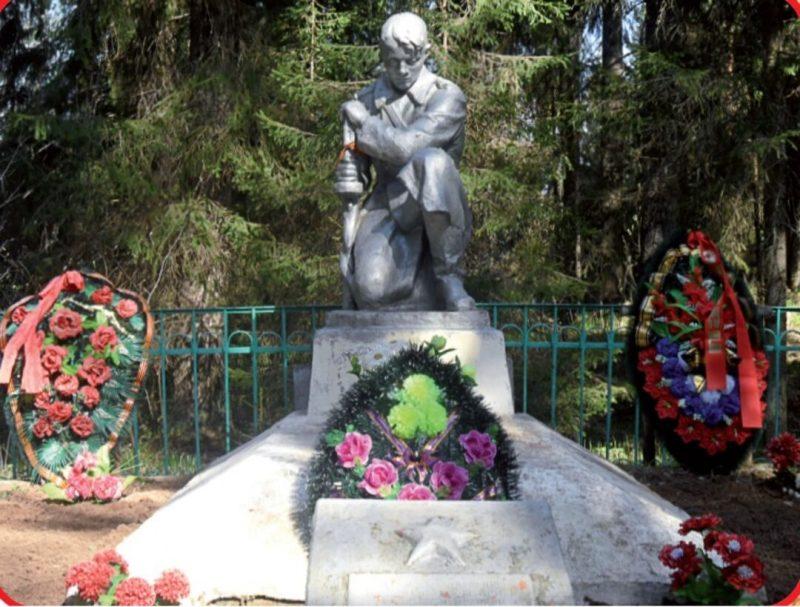 д. Широкое Бологовского р-на. Памятник, установленный на братской могиле советских воинов .