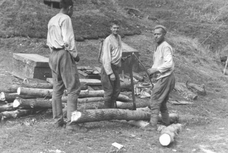 Трое советских пленных за работой по заготовке дров. Август 1941 г.