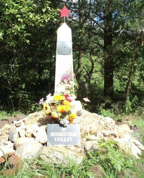 п. Есемово Ржевского р-на. Братская могила 29 неизвестных советских воинов.