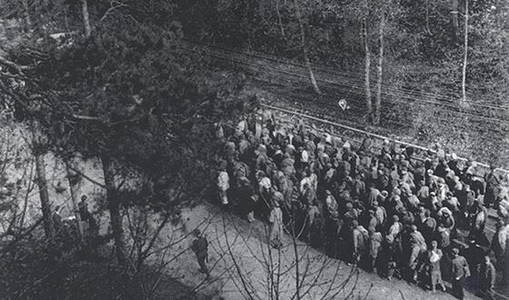 Заключенные из подлагеря Кауферинг на «Марше Смерти» в Ландсберг-ам-Лех.