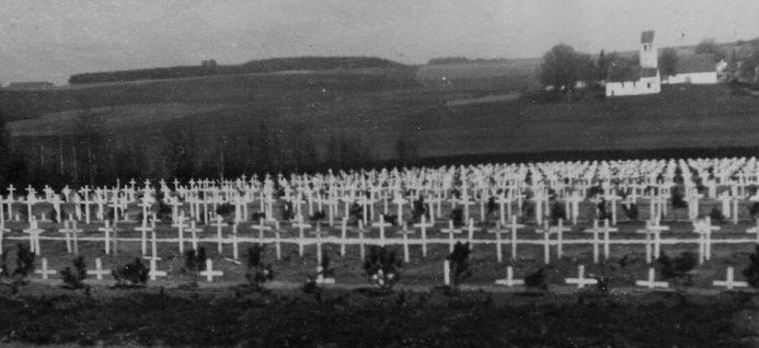 Ряды деревянных крестов на кладбище для жертв концлагеря на лесном кладбище. 1945 г.