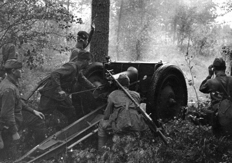 Расчет 76,2-мм полковой пушки образца 1927 года. Волховский фронт, июль 1942 г.