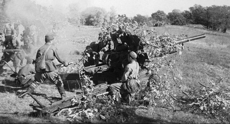 Батарея 76,2-мм дивизионных пушек образца 1939 года (УСВ) под Сталинградом. Август 1942 г.