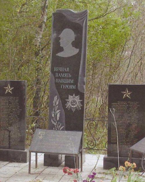 с. Петровское Калининского р-на. Памятник, установленный на братской могиле советских воинов.