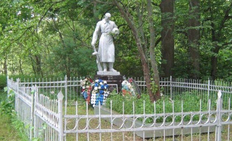 д. Полянское Калининского района. Памятник, установленный на братской могиле советских воинов.