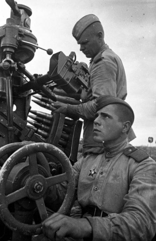 Расчет 37-мм зенитной пушки 61-К. Калининский фронт, 1943 г.