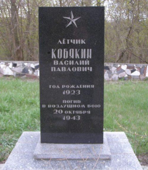 Могила погибшего летчика.