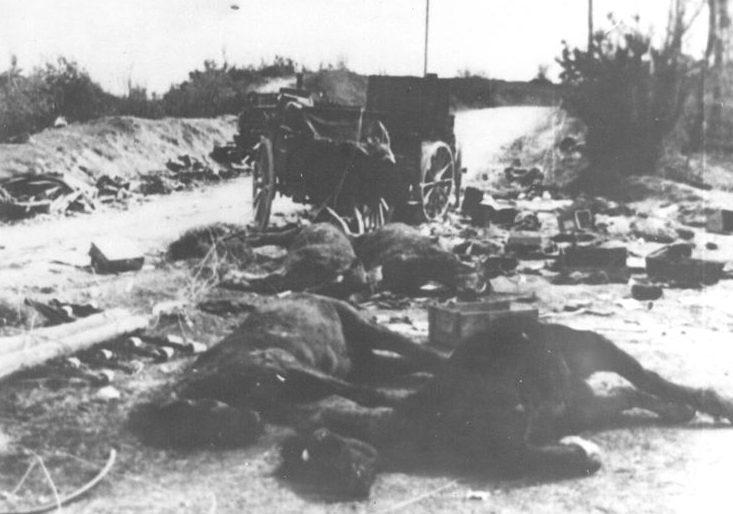 Разбитый немецкий обоз после боев к северу от Сараево.