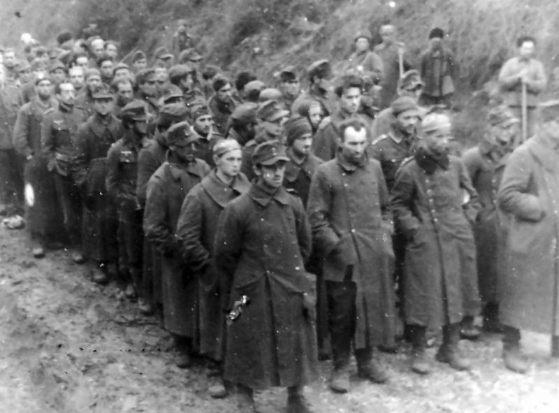 Немецкие военнопленные, захваченные у Брод.