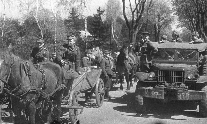 Немецкие солдаты сдаются на косе Фрише-Нерунг.
