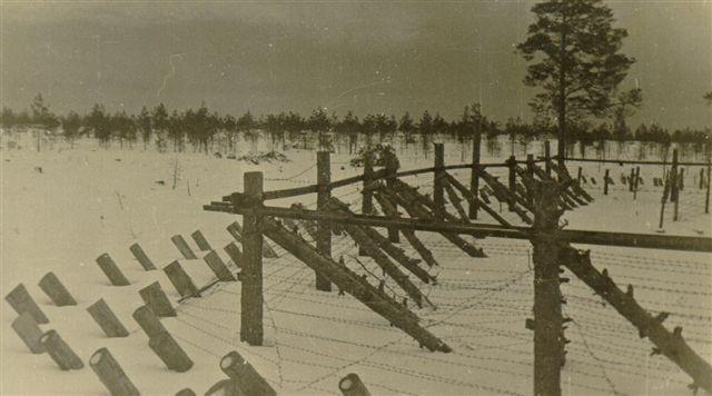 Немецкие позиции вокруг города. Январь 1944 г.