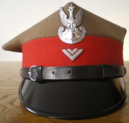 Рогативка вахмистра жандармерии образца 1935 года.