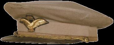 Фуражка офицера ВВС.
