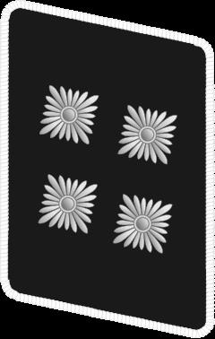 Петлица батальонфюрера.