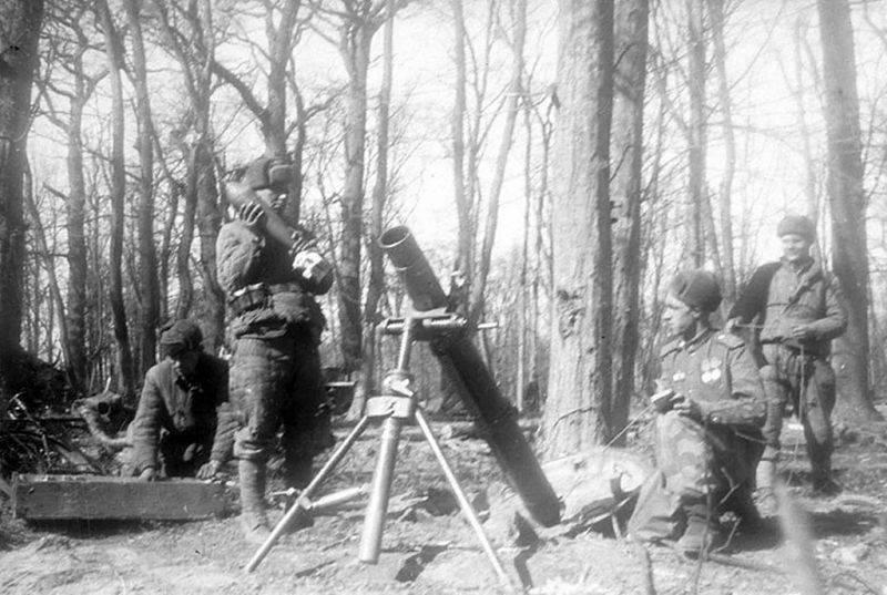 Минометный расчет 11-ой гвардейской армии на огневой позиции на подступах к Пиллау. Апрель 1945 г.