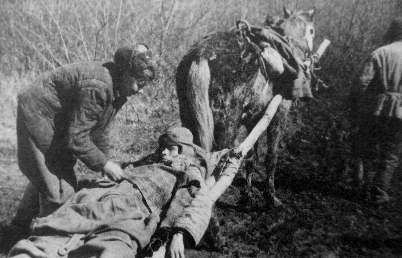 Военфельдшер Анастасия Шумилова у раненого бойца на конной волокуше. Северо-Кавказский фронт. Ноябрь 1942 г.