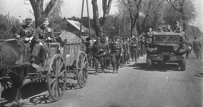 Немецкие пленные в районе косы Фрише-Нерунг. Апрель 1945 г.