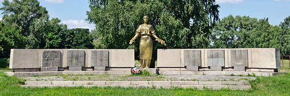 с. Боровица Чигиринского р-на. Памятник советским воинам.