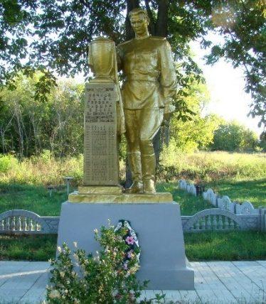 с. Новоселица Чигиринского р-на. Памятник, установленный на братской могиле воинов, погибших в боях за село.