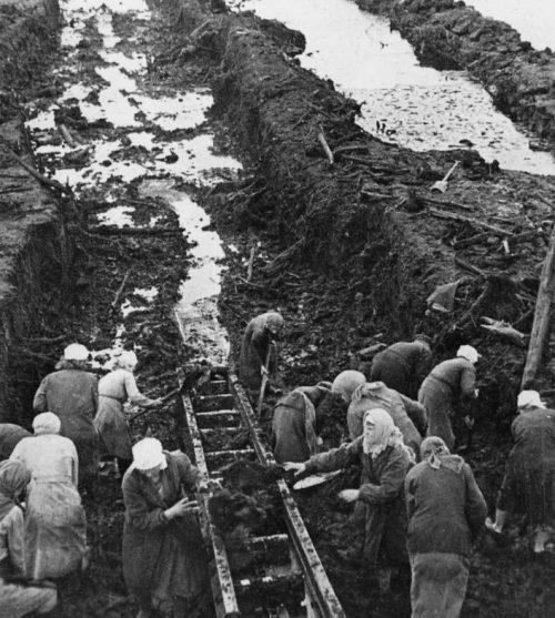 Женщины за добычей торфа в Ленинградской области. 1944 г.