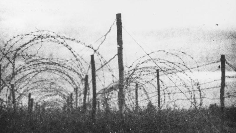 Забор из колючей проволоки вокруг концлагеря Клоога. Сентябрь 1944 г.
