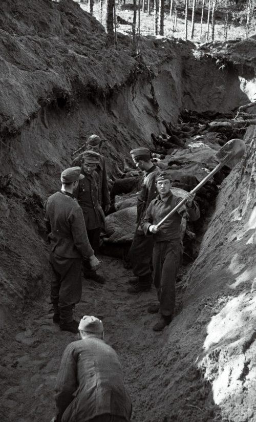 Немецкие военнопленные копают могилы для жертв концлагеря Клоога. Сентябрь-октябрь 1944 г.