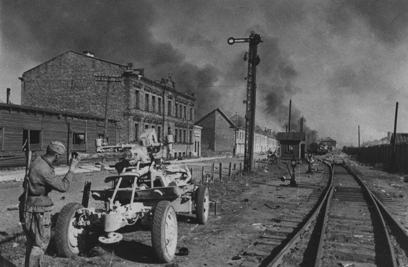 Брошенная немцами в районе торгового порта Таллина 40-мм зенитная пушка «Бофорс». Сентябрь 1944 г.