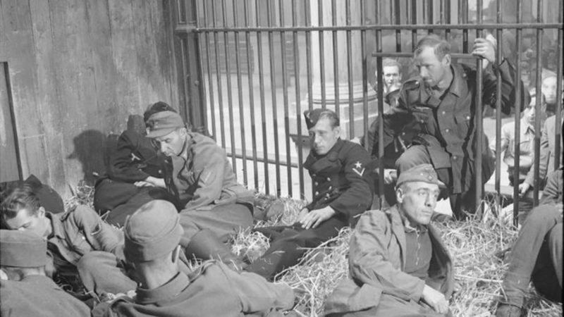 Немецкие военнопленные в Антверпене запертые в клетках зоопарка. 1944 г.
