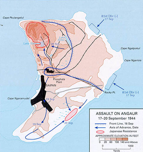 Карта-схемы битвы за Ангаур.