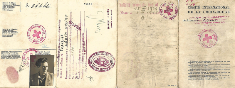Образец паспорта беженца от Красного Креста.