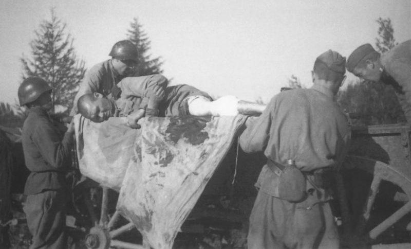 Санитары эвакуируют раненого бойца на конной повозке во время Южно-Сахалинской наступательной операции. Август 1945 г.