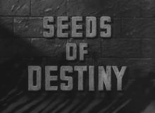 Семена судьбы