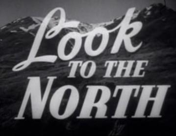Посмотрите на север
