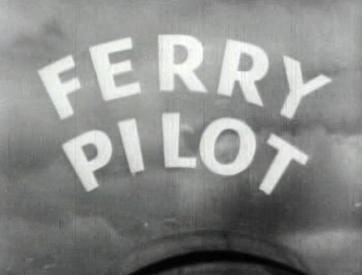 Пилот-перегонщик